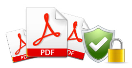 PDF Feature4