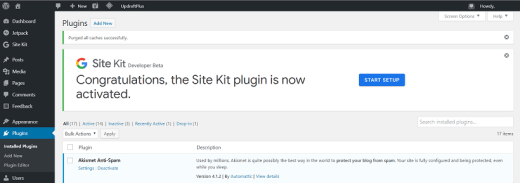Google Site Kit WordPress Plugin Activation