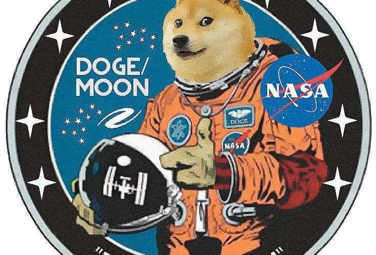 Future of Dogecoin? Safe or Risky Investment, Dogecoin Going To The Moon? 2021