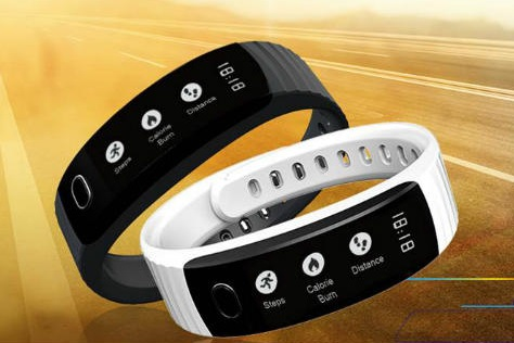 intex fitrist features