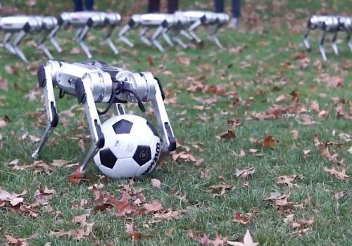 चितुवा जस्तै कुद्न सक्ने रोबोट बनाए विद्यार्थीहरुले, प्रति सेकेण्ड ३० वटा निर्णय लिने क्षमता