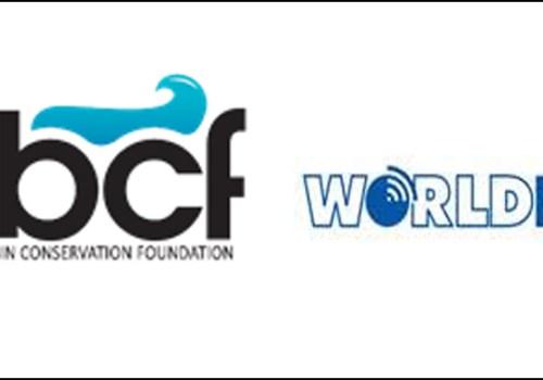 डिजिटल कर्णालीका लागि केबीसीएफ र वर्ल्डलिंकको सहकार्य