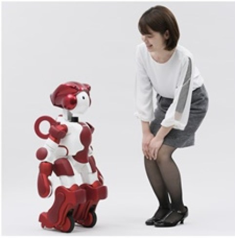 Hitachi, Hitachi's new humanoid robot offers customers assistance services, Technology Times