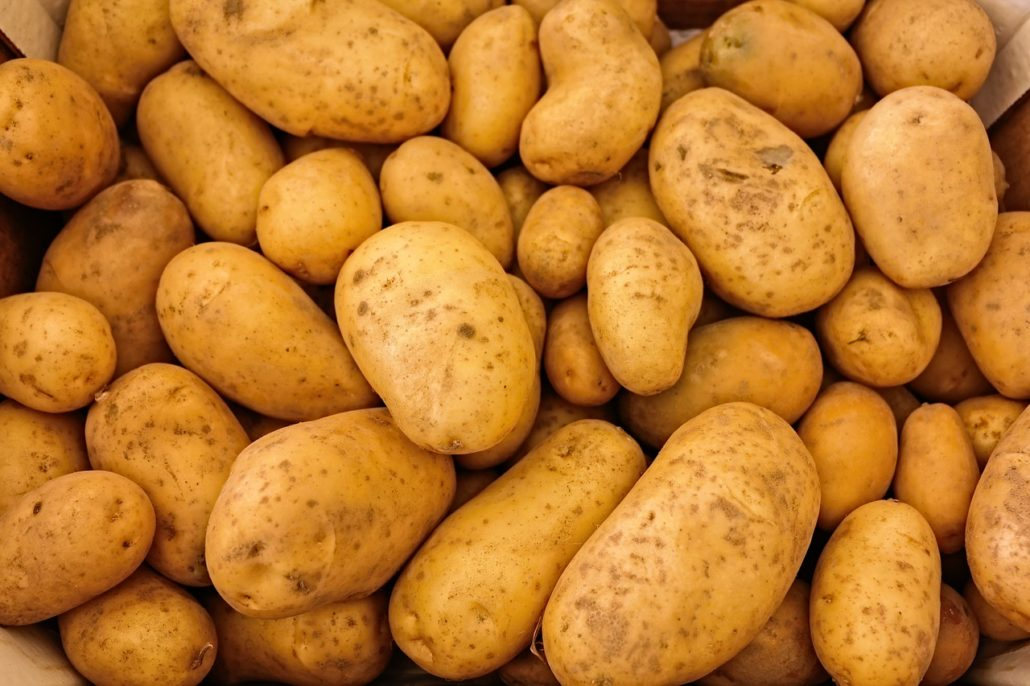 ile kalorii ma gotowany ziemniak czy ziemniaki tuczą