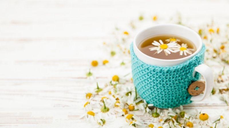 rumianek zdrowie herbatka