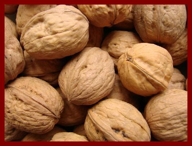 Une image contenant fruit, noix, intérieur Description générée automatiquement