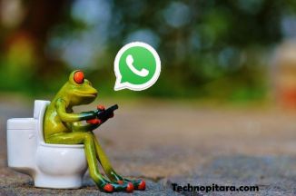 HOW TO ENABLE WHATSAPP TEXT FEATURES IN AN ANDROID MOBILE