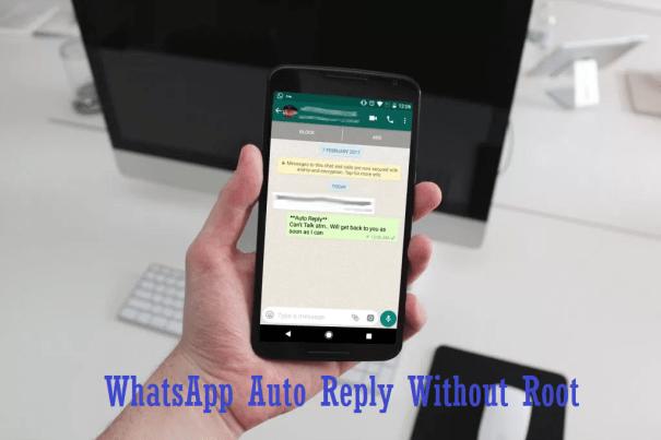 auto reply for whatsapp premium