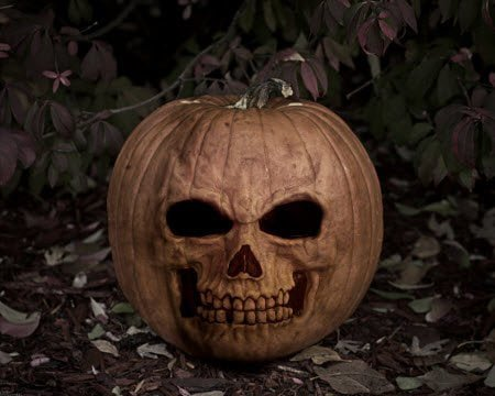 Pumpkin Skull Scary Halloween Wallpaper