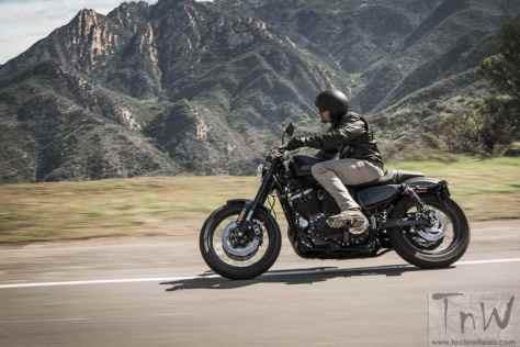 Harley-Davidson Roadster (8)