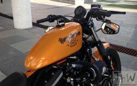 Vintage Barrel Harley-Davidson Iron 883 (22)