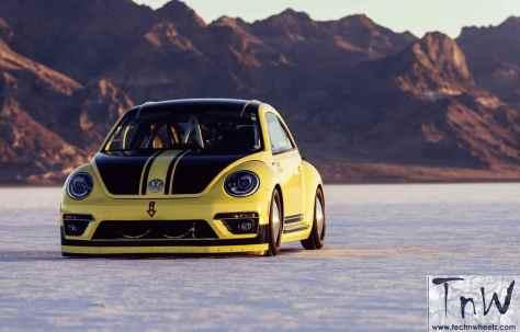 Beetle LSR 2