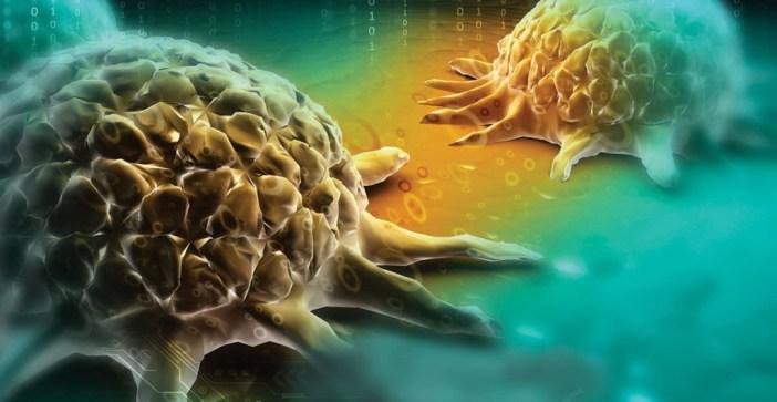 Spoiler alert: kanapės vėžio irgi negydo