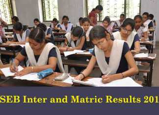 The Bihar School Examination Board is likely to declare BSEB Class 12 inter results 2017 and BSEB Class 10 matric results 2017 in the last week of May and mid-June at bihar.indiaresults.com (Photo/BSEB)