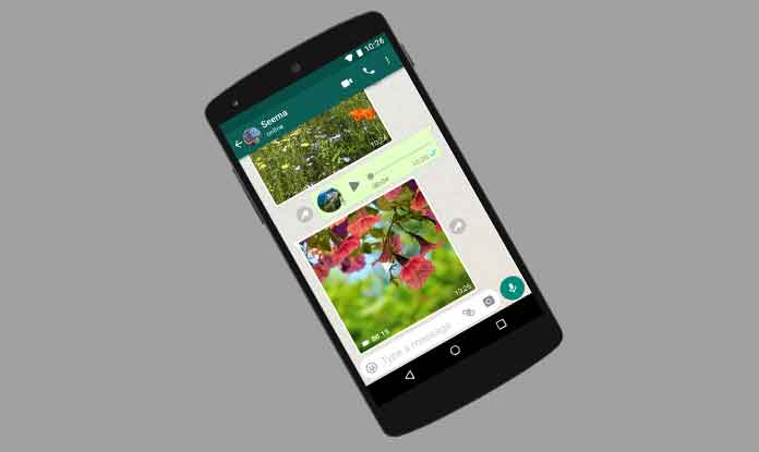 Last year in November 2016, WhatsApp announced the rollout of its WhatsApp video calling feature (Photo/WhatsApp)