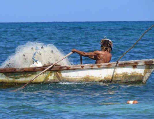 Fisheries, Aquaculture
