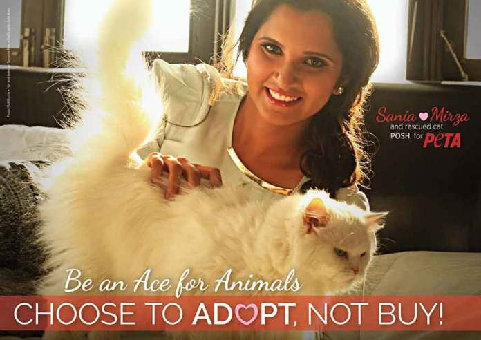 Sania Mirza for Peta Ad