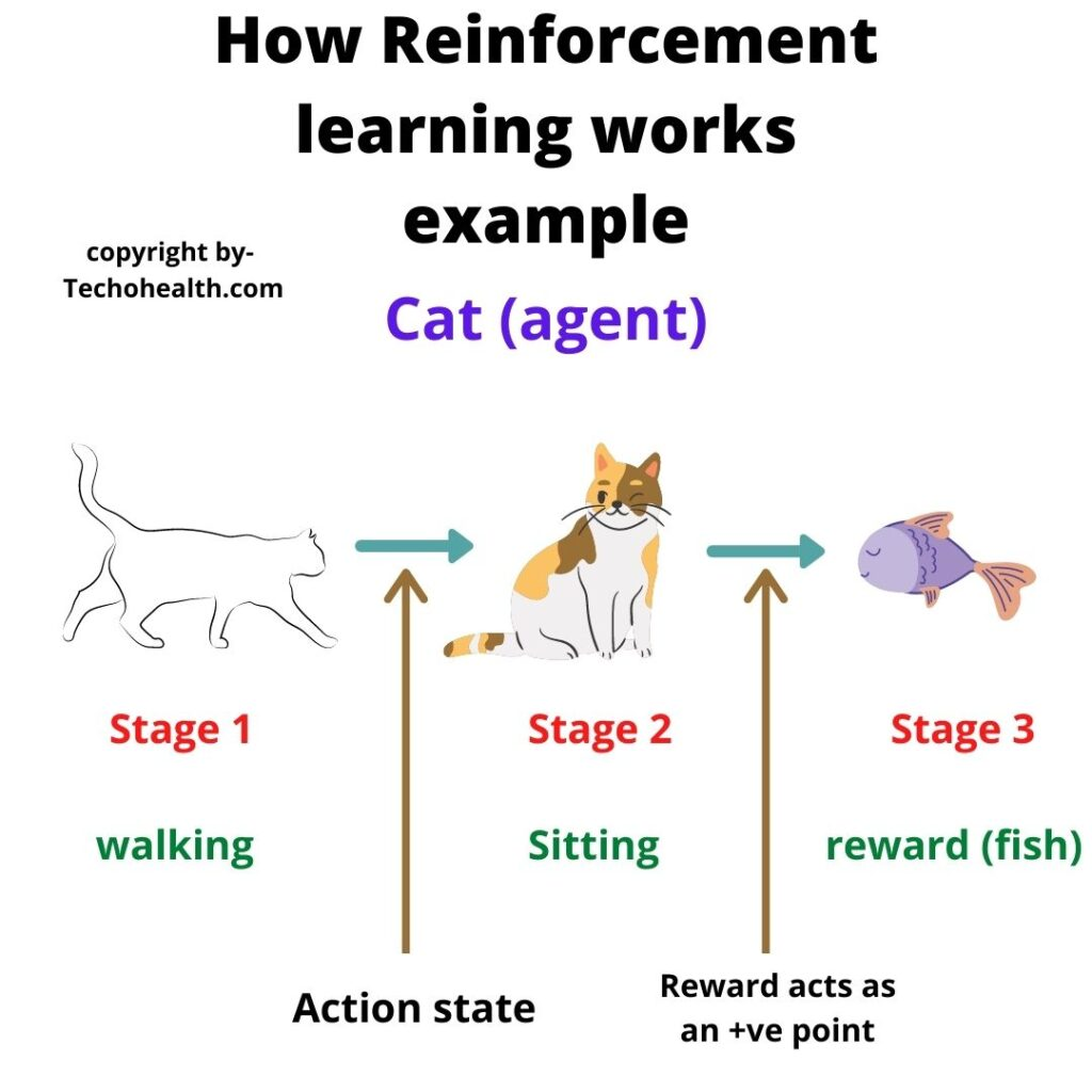 How Reinforcement learning works Example by techohealth.com