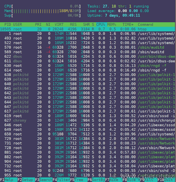 Running htop on RHEL 8 Linux server