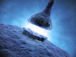 Synapse image via Shutterstock