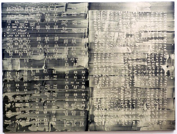 Codex: Genome (Primer), 2000 Silksreen and pigment on wooden panels 3' x 4' (Photo by Henry Sanchez)