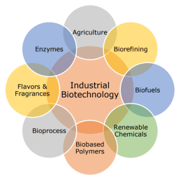 Industrial Biotechnology - Bioentrepreneurship