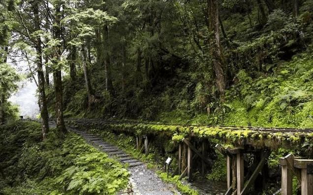 台灣秘境之見晴古道|宜蘭|太平山