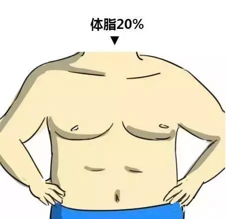 體脂影響腹肌