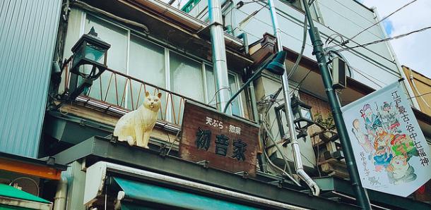 東京 日暮里貓街