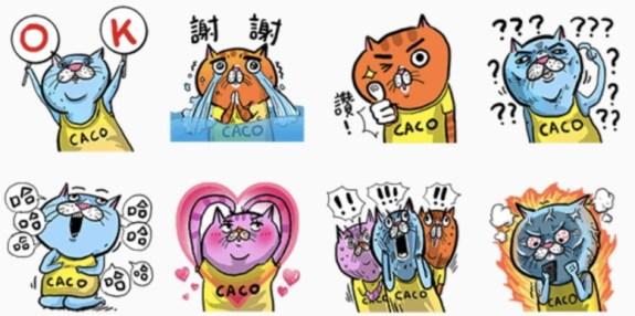 CACO加州椰子 x eh! cat