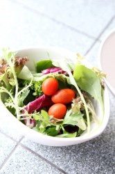 health_salad_weightloss_food