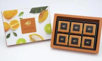 「フルーツ発酵」カカオ豆のチョコレート 『Dari K』