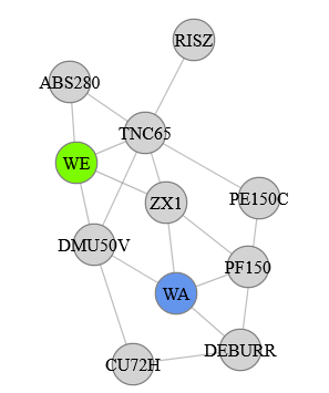 Dritte Variante des Force-Directed-Graph