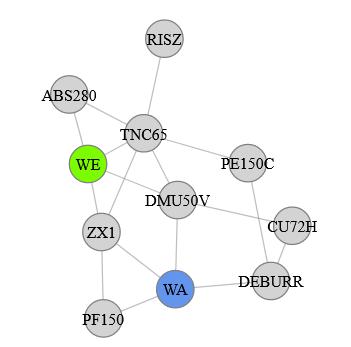 Variante des Force-Directed-Graph mit Layoutpositionierung-Vorschlag 2