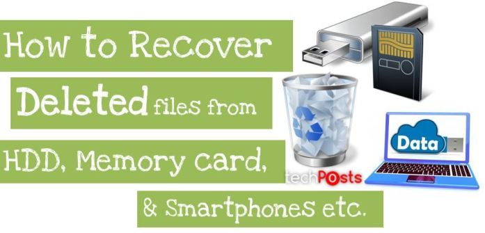 Recover Lost Deleted files quickly