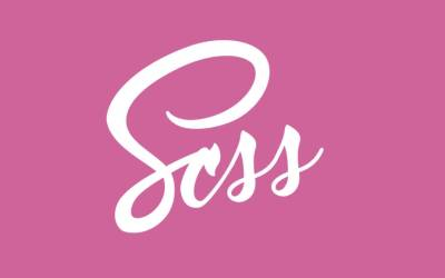 SCSS or CSS