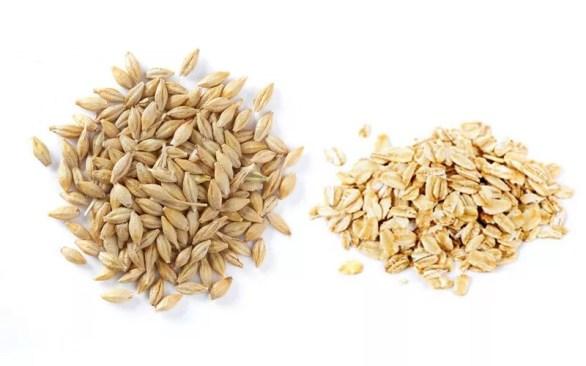 Oats and Barley.jpg
