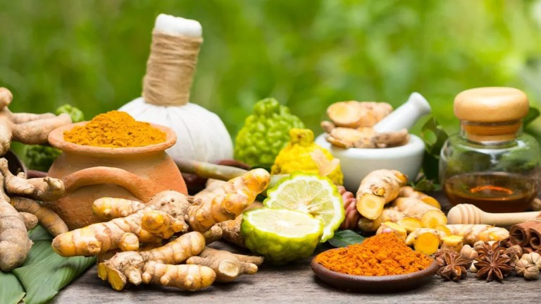 5 Most Popular Herbs and Their Benefits