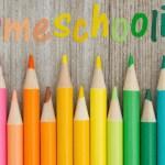 What Are Your Options in Kindergarten Homeschool Curriculum?