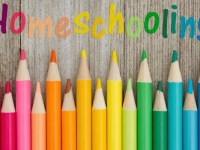 What Are Your Options in Kindergarten Homeschool Curriculum?