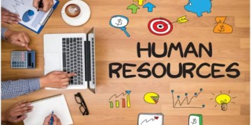 Everything You Need to Know About Professional Employer Organizations