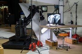 kira-microsoft-surface-studio-5