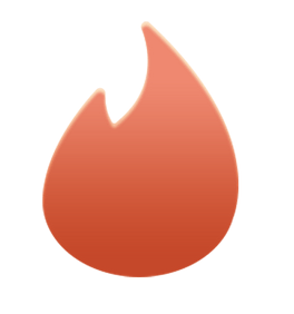 Tinder for PC 1