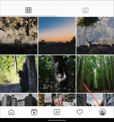 Profile Tab Instagram App (2)