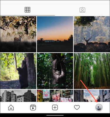 Profile Tab Instagram App (3)