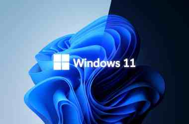 Windows 11 Wallpapers: Download the new wallpaper from Windows