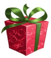 Holiday Gift Guide Winners!
