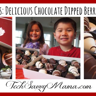 Shari's Berries: Delicious Chocolate Dipped Berries Delivered