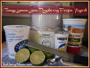 Tangy Lemon Lime Raspberry Frozen Yogurt