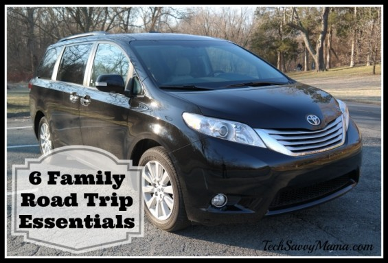 6 Family Road Trip Essentials